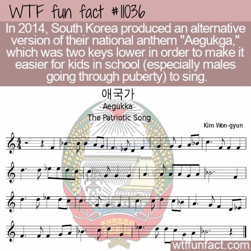 WTF Fun Fact - Revised Aegukga