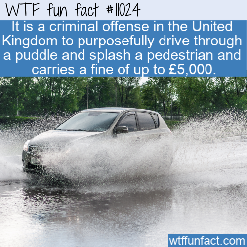 WTF Fun Fact - Splashing Is A Crime
