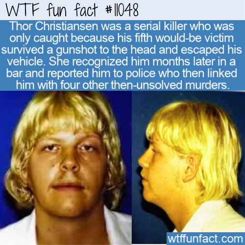WTF Fun Fact - The Mad Dane