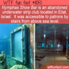 WTF Fun Fact – Nymphas Show Bar
