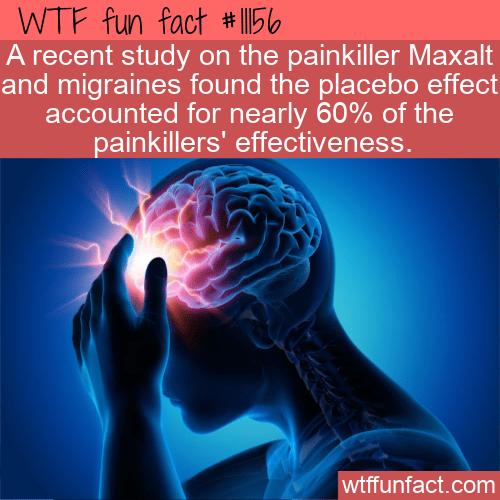 WTF Fun Fact - Placebo Effect