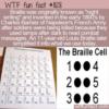 WTF Fun Fact – Barbier's Night Writing