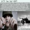 WTF Fun Fact – Tootsie Rolls Saved Marines