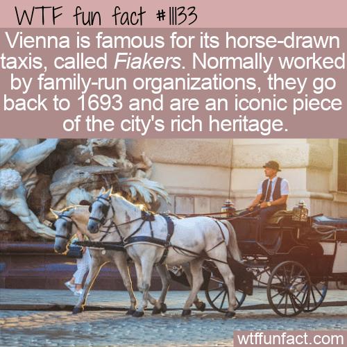 WTF Fun Fact - Vienna's Famous Fiakers