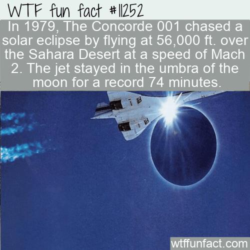 WTF Fun Fact - Concorde Solar Eclipse