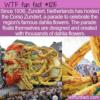 WTF Fun Fact – Corso Zundert