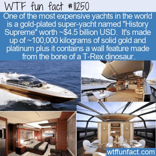 WTF Fun Fact - Golden Yacht