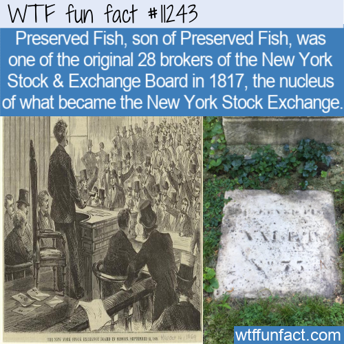 WTF Fun Fact - Preserved Fish