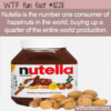 WTF Fun Fact – Primary Hazelnut Consumer