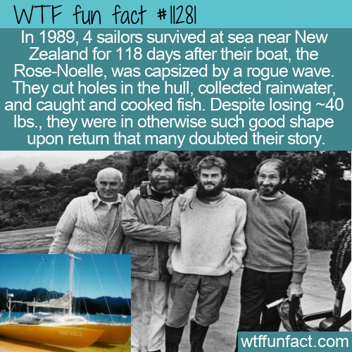 WTF Fun Fact - Survivors In Too Good Of Shape