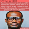 WTF Fun Fact – The Unknown Person