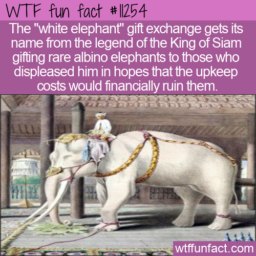 WTF Fun Fact - White Elephant Gift Exchange